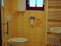 Nový Dvůr - apartmán k pronajmutí - 8