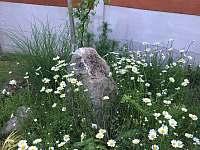 Zahrada - Horní Planá