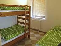 Apartmán K Debrníku - apartmán k pronajmutí - 8 Železná Ruda
