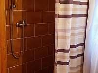 Koupelna přízemí, sprchový kout - České Žleby