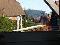 Výhled z okna - Stezka korunami stromů - Lipno nad Vltavou