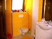 Apartmán 4+kk- koupelna a WC