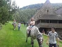 Hrad Velhartice- skvělý tip na výlet - rekreační dům k pronájmu Železná Ruda
