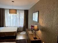 Rezidence Šumava - apartmán U Medvěda - apartmán - 31 Železná Ruda