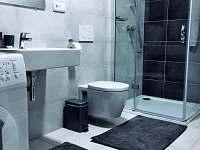 Rezidence Šumava - apartmán U Medvěda - apartmán k pronajmutí - 4 Železná Ruda