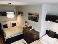 Železná Ruda - apartmán k pronajmutí - 22