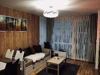 Železná Ruda - apartmán k pronajmutí - 11