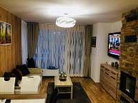 Rezidence Šumava - apartmán U Medvěda - pronájem apartmánu - 12 Železná Ruda