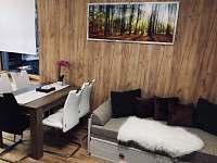 Rezidence Šumava - apartmán U Medvěda - apartmán k pronajmutí - 11 Železná Ruda