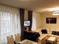Rezidence Šumava - apartmán U Medvěda - pronájem apartmánu - 18 Železná Ruda