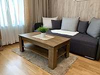 Rezidence Šumava - apartmán U Medvěda - apartmán - 24 Železná Ruda