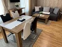 Rezidence Šumava - apartmán U Medvěda - pronájem apartmánu - 25 Železná Ruda