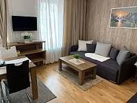 Rezidence Šumava - apartmán U Medvěda - apartmán - 26 Železná Ruda