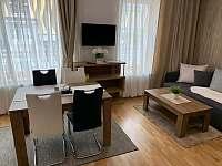Rezidence Šumava - apartmán U Medvěda - apartmán - 27 Železná Ruda
