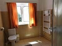 Apartmánový dům OTRE - apartmán k pronajmutí - 8 Frymburk