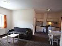 Apartmánový dům OTRE - apartmán k pronájmu - 10 Frymburk