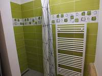 Koupelna apartmán 2 - k pronájmu Černá v Pošumaví