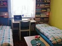 Pokoj pro 2 osoby (dětský) - apartmán k pronajmutí Horní Planá