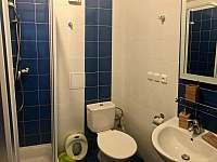 Apartmán k pronajmutí - apartmán ubytování Kvilda 126 - 9