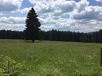 Národní park Šumava - Kvilda 126