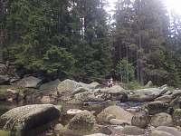 Vydra - Kvilda 126
