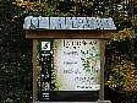 Železná Ruda - Špičák - apartmán k pronájmu - 9