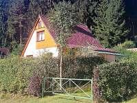 Chata Kobylnice oplocení živým plotem - pronájem Lipno nad Vltavou - Kobylnice