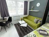 Apartmán Stela - pronájem Stožec