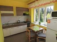 Apartmán Premium kuchyně - pronájem chaty Javorník