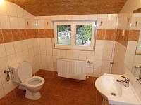 Apartmán Standard koupelna - chata k pronájmu Javorník