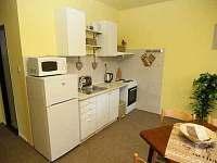 Kuchyně apartmán 1. patro - chata k pronajmutí Javorník