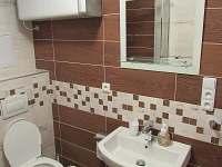 Umyvadlo a záchod - apartmán k pronájmu Stožec