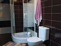 Koupelna - sprchový kout a WC - Záluží