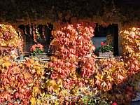 Podzim na dvoře