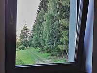 výhled z většího pokoje na les a příjezdovou cestu - chata k pronajmutí Slupečná