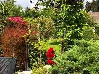 Zahrada s  Clematisem