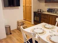 Apartment ADAM u Lipna - apartmán k pronájmu - 10 Nová Pec - Nové Chalupy