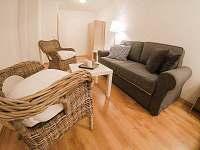 Nová Pec - Nové Chalupy - apartmán k pronajmutí - 5