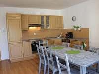 Ubytování Vakantiehuis Villa Park Lipno 200 - kuchyně
