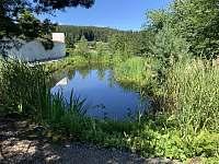 Rybníčky pod chalupou - pronájem Stachy - Zadov