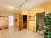 sauna - apartmán k pronájmu Mitterfirmiansreut - Mitterdorf
