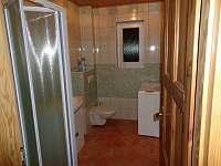 Koupelna se sprchovým koutem a WC - chalupa ubytování Dolní Nakvasovice