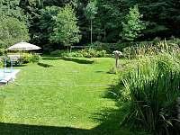 Pohled na zahradu v zadní části ohraničenou lesem - chalupa k pronájmu Rohanov