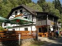 ubytování  na chatě k pronajmutí - Hamry