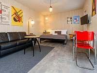 Apartmány Kopačka - apartmán - 16 Svitavy