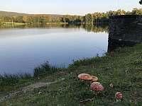 rybník Horní Peklo - Seč - Kraskov