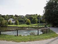 rybník v obci - Strakov