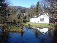 chata u Muzikanta - ubytování Žďárky