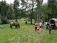 Akce s koňmi - Doly