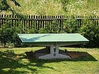 Stolní tenis - chata ubytování Doubravice